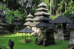 Alas Kedaton Monkey Forest - Bali Tour Package