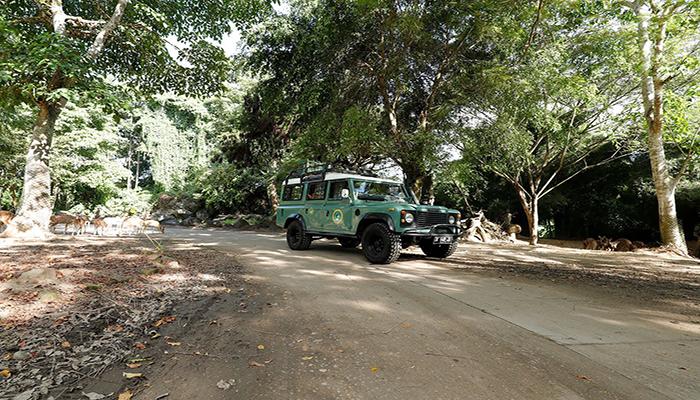 4x4 Bali Safari Tour