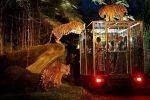 Bali Night Safari Package