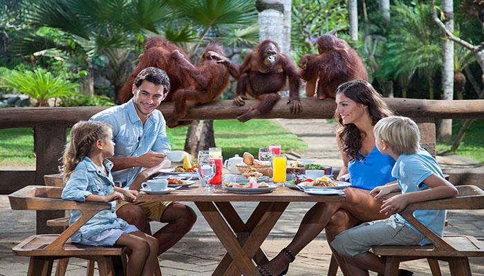 Bali Zoo Park - Bali Tour Package