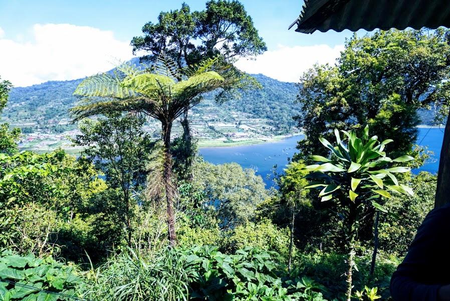Twin-Lake-Buyan-lake-and-Tamblingan-Lake-Bali-Tour-Service