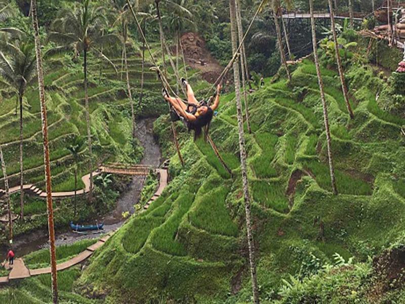 Bali-Swing-Bali-Tour-Service