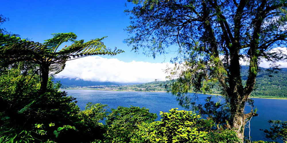 Twin Lake Tamblingan Lake and Buyan Lake - Bali Tour Package