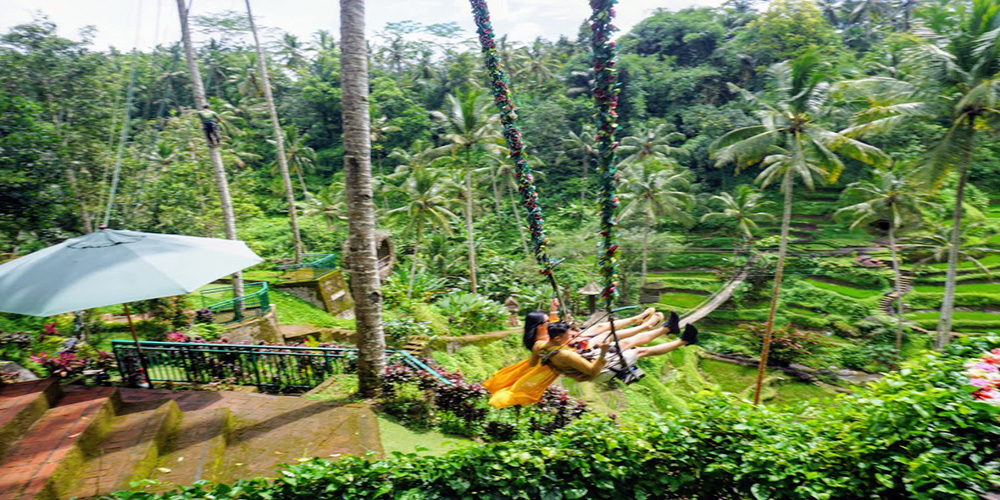 Ubud Tour - Bali Tour Service