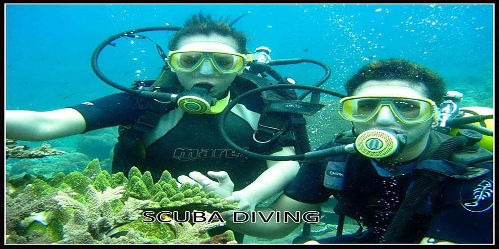 Diving at Tanjung Benoa Beach - Bali Tour Package