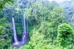Sekumpul Waterfall - Bali Tour Package