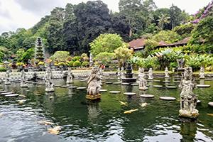 Tirta Gangga Water Palace - Bali Tour