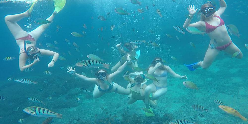 Snorkeling to Watch Stunning Water View in Tanjung Benoa - Bali Tour Package