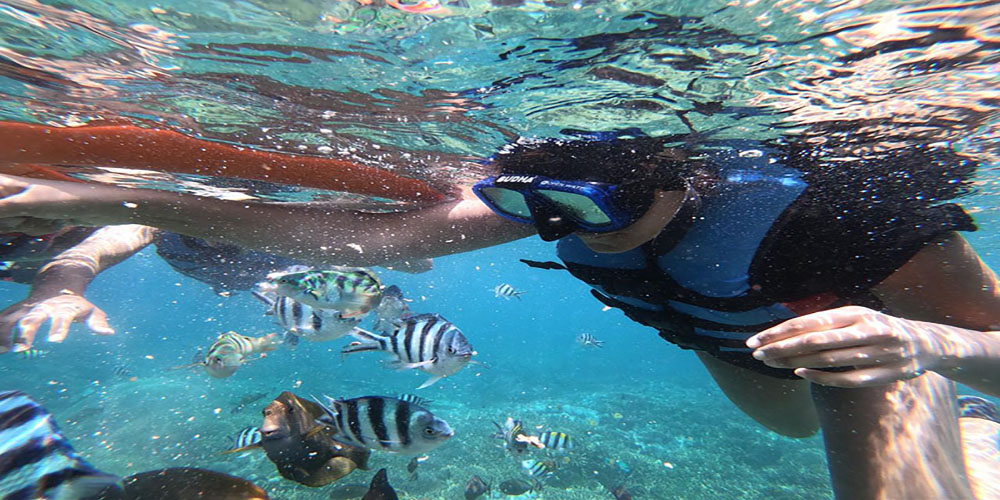 Glass Bottom Boat to Enjoy Underwater Scenery without Diving - Bali Tour Package