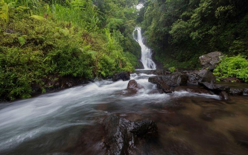 Cemara Waterfall - Bali Tour Package