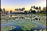 Lotus Lagoon Candidasa - Bali Tour Package
